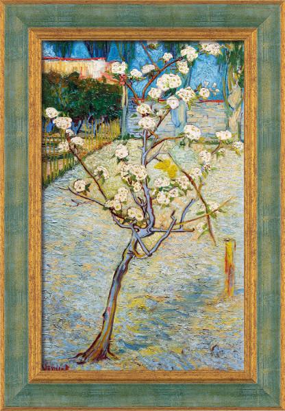 "Vincent van Gogh: Bild ""Birnenbaum in Blüte"""